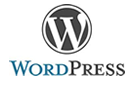 WordPress Version 3.2.1